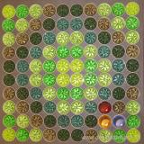 Nespresso Kapselbild grün 10x10